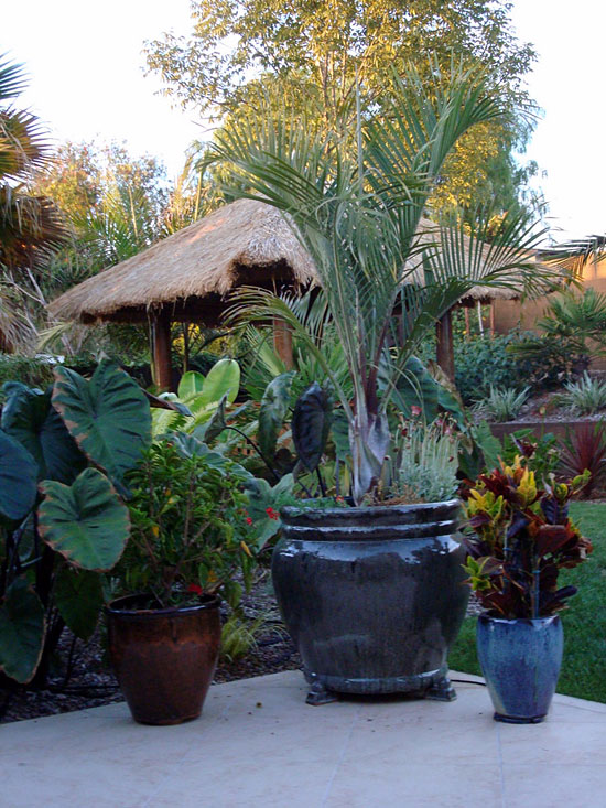 Colorful Pots And Plantings Break Up The Square Patio And Add Interest.